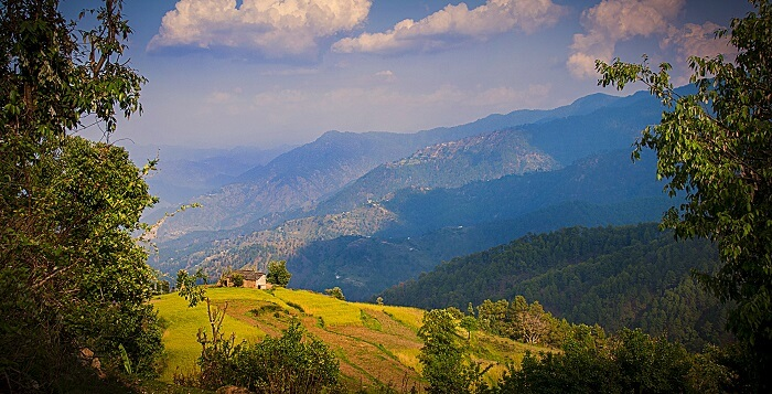 Binsar, near Almora Roomsoom