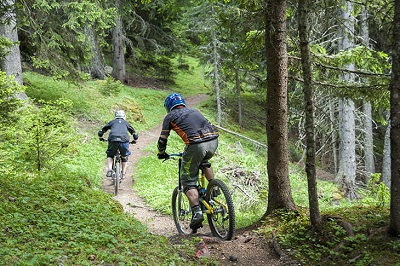 Mountain Biking in Dandeli Jungle