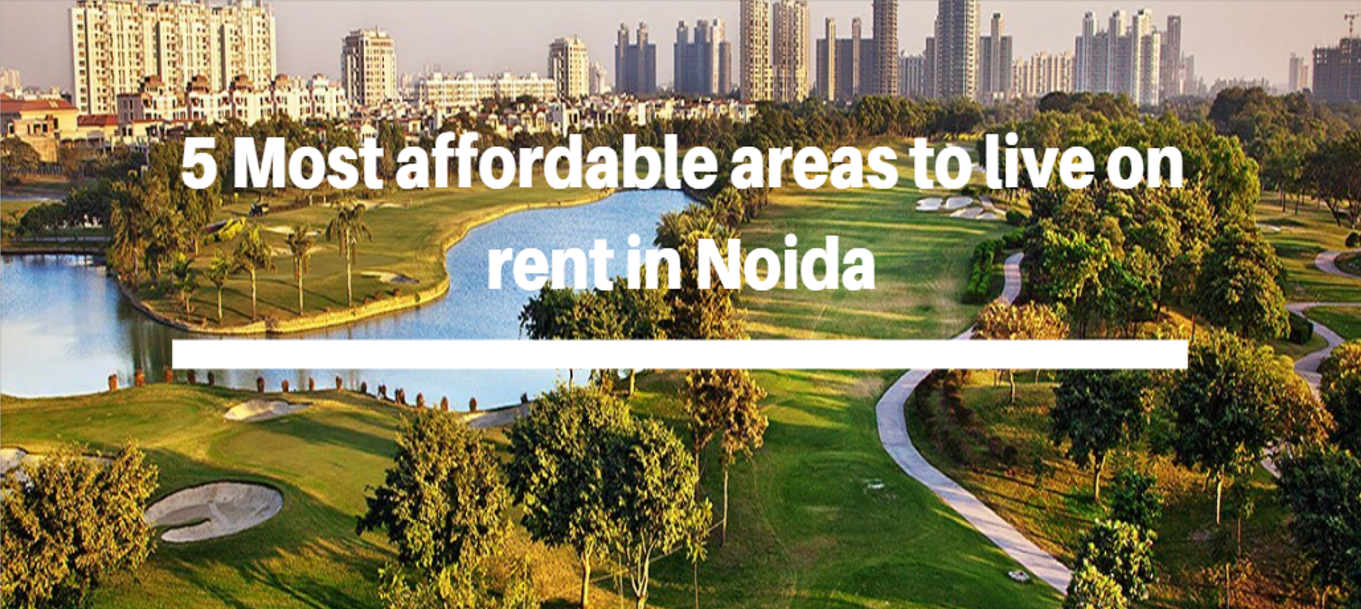 5 Most affordable areas to live on rent in Noida_roomsoom